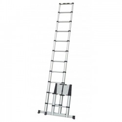 TLM1001 Telescopische ladder